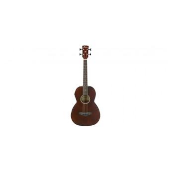 Ibanez AVNB1E BV Acoustic Bass Guitar