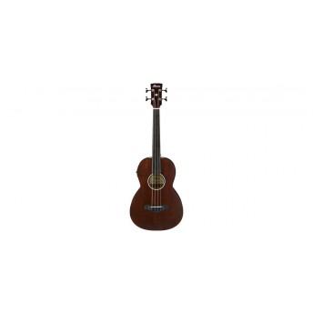 Ibanez AVNB1FE BV Fretless Acoustic Bass Guitar