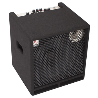 Eden TN2251 Terra Nova Bass Amplifier Combo